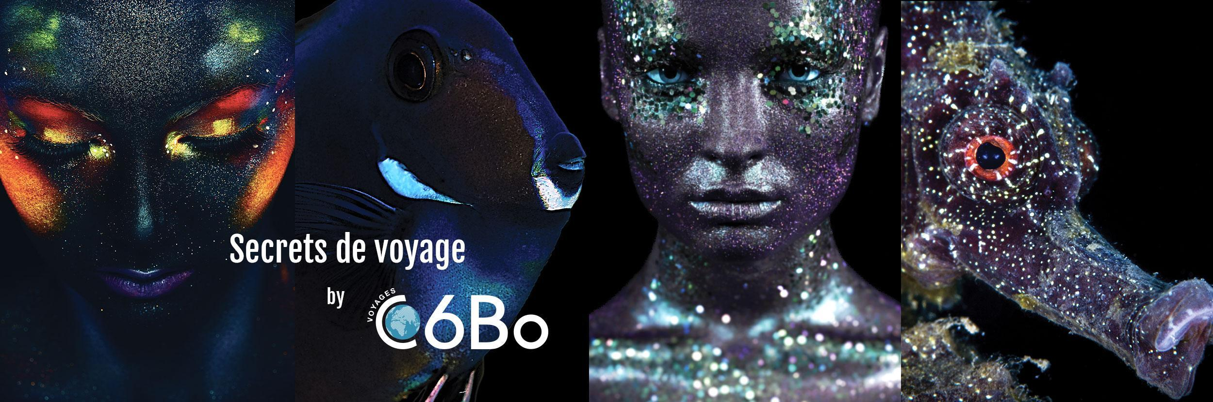 c6bo voyage plongee page accueil 2019 combo4